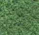 Mipolam naaldvilt tapijt Mosgroen *Meeneemprijs* per m1